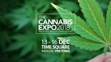 Photo of Time Square's Sun Arena hosts first ever Cannabis Expo