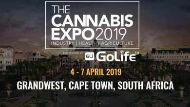 Photo of Cape Town's first Cannabis Expo to be held at GrandWest in April