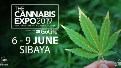 Photo of The Cannabis Expo at Sibaya is going to be big!