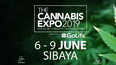 Photo of Cannabis infused cuisine offered at The Cannabis Expo Sibaya