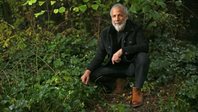 Photo of Yusuf / 'Cat Stevens' releases the incredible reimagining 'Tea for the Tillerman²'  today!