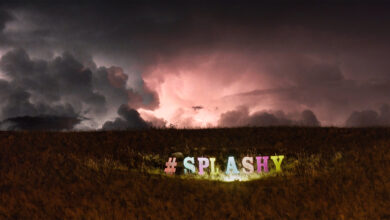 Photo of Splashy Fen Hosts Music For The First Time in Two Years for 250 Lucky Fans